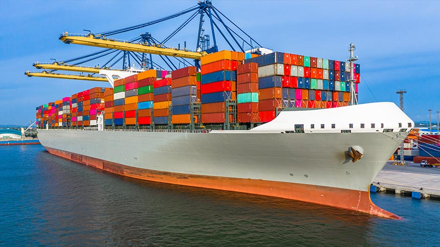 10-points action plan exports