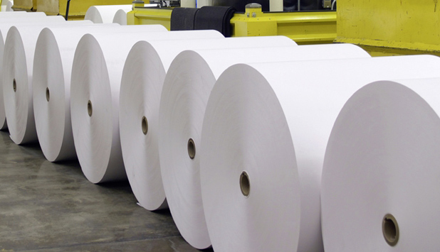 European Pulp and Paper Sector